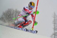 5-Platz_Andreas-Schachl_Sport_GoodBye-Marcel-Hirscher